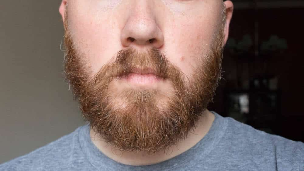 take a shower before you trim your beard