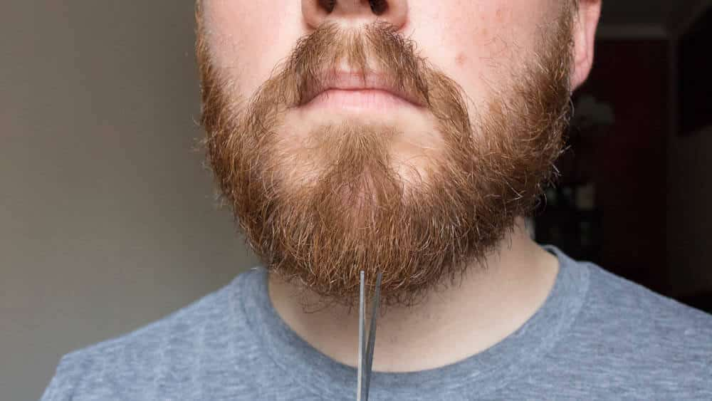 trimming the bottom of your beard with scissors up