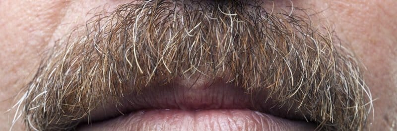 mustache for movember