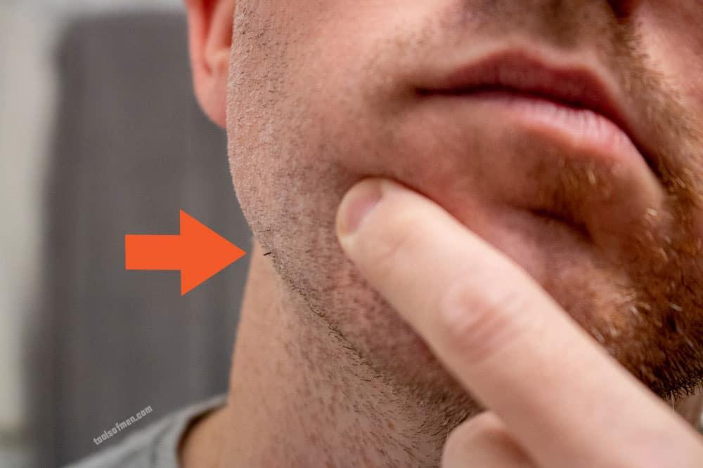 microtouch solo pili multigemini beard