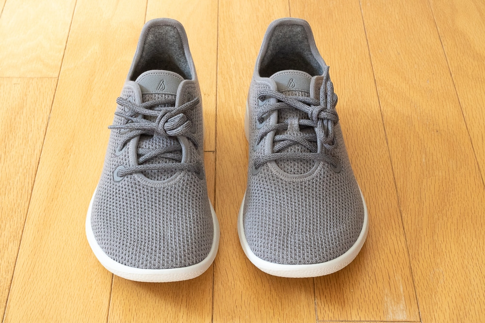 Allbirds Tree Runners Shoe